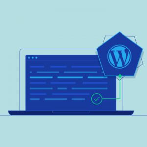 Wordpress Database Management, Complete Guide for Beginners.