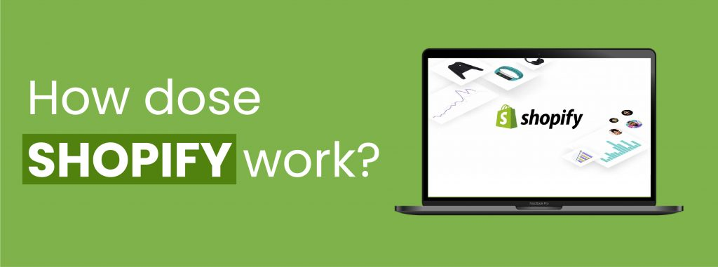 How dose shopify work