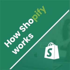 shopify work